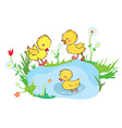 Funny ducks in the pond and flowers vector image