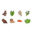 herb and spices icons in set collection for design vector image