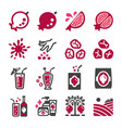 pomegranate icon set vector image vector image