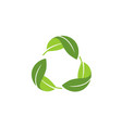 recycle leaf green logo vector image vector image