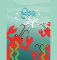 sea life cartoon vector image