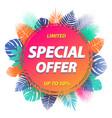 special offer label design for promotion vector image vector image