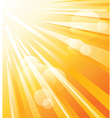Sun shinning vector image vector image