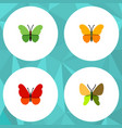 flat moth set of beauty fly butterfly milkweed vector image vector image