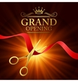 Grand opening with red ribbon and vector image vector image
