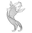 Koi Fish3 vector image vector image