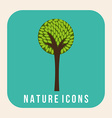 nature design vector image vector image