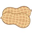 Peanut cartoon