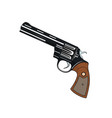 pistol revolver vector image vector image