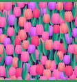 spring fresh tulips seamless background abstract vector image