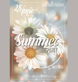 summer background with chamomile and delicate vector image vector image
