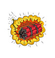 tnt dynamite stick lit fuse exploding drawing vector image