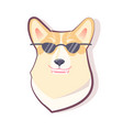 dog emoticon puppy and glasses vector image