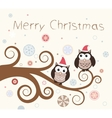 Christmas card Birds on a winter branch vector image vector image
