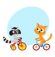 cute little raccoon and cat characters riding vector image