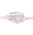 encryptions word cloud concept vector image vector image