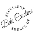 Excellent source of beta carotene stamp vector image vector image