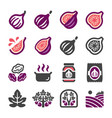 fig icon set vector image