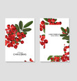 ash berry greeting merry christmas cards winter vector image vector image