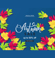autumn sale poster with colorful leaves vector image vector image