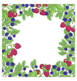 berry square frame vector image