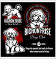 bichon frise - set for t-shirt logo vector image vector image