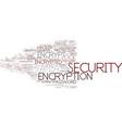encrypt word cloud concept vector image vector image