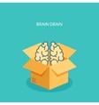 Flat carton box Brains vector image vector image