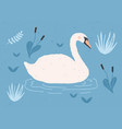 gorgeous lonely white swan swimming in water of vector image