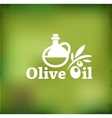 Olive oil backgound vector image