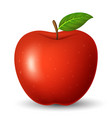 red apple with green leaf isolated on white vector image
