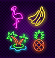 tropical symbols neon signs on dark background vector image vector image