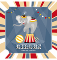 Vintage card with elephant vector image vector image