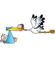 Stork Delivering A Newborn Baby Boy vector image