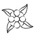 sketch flower leaves natural decoration vector image