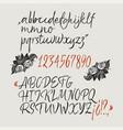 calligraphic elegant brush font vector image vector image