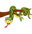 cartoon green snake on tree branch vector image vector image