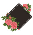 frame coral roses hand drawing vector image vector image