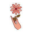 hand with flower with leaves icon isolated vector image