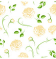 seamless pattern with yellow roses beautiful vector image vector image