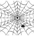spider web with cute spider vector image vector image