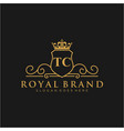 tc letter initial luxurious brand logo template vector image vector image
