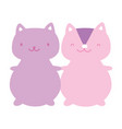 cute squirrel and cat cartoon characters vector image vector image