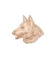 German Shepherd Dog Head Mono Line vector image vector image