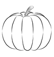 outline pumpkin black fine lines and spine vector image vector image