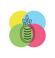pineapple tropical fruit vector image vector image