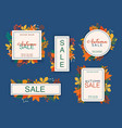 sale banner set discount season autumn leafs on vector image vector image