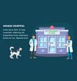 animal hospital flat web banner template
