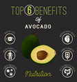 avocado health benefits vector image vector image