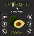 avocado health benefits vector image